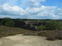 Veluwe_lookout point_Posbank