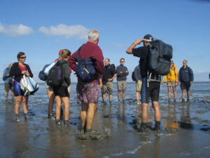 Activities in North Sea Island
